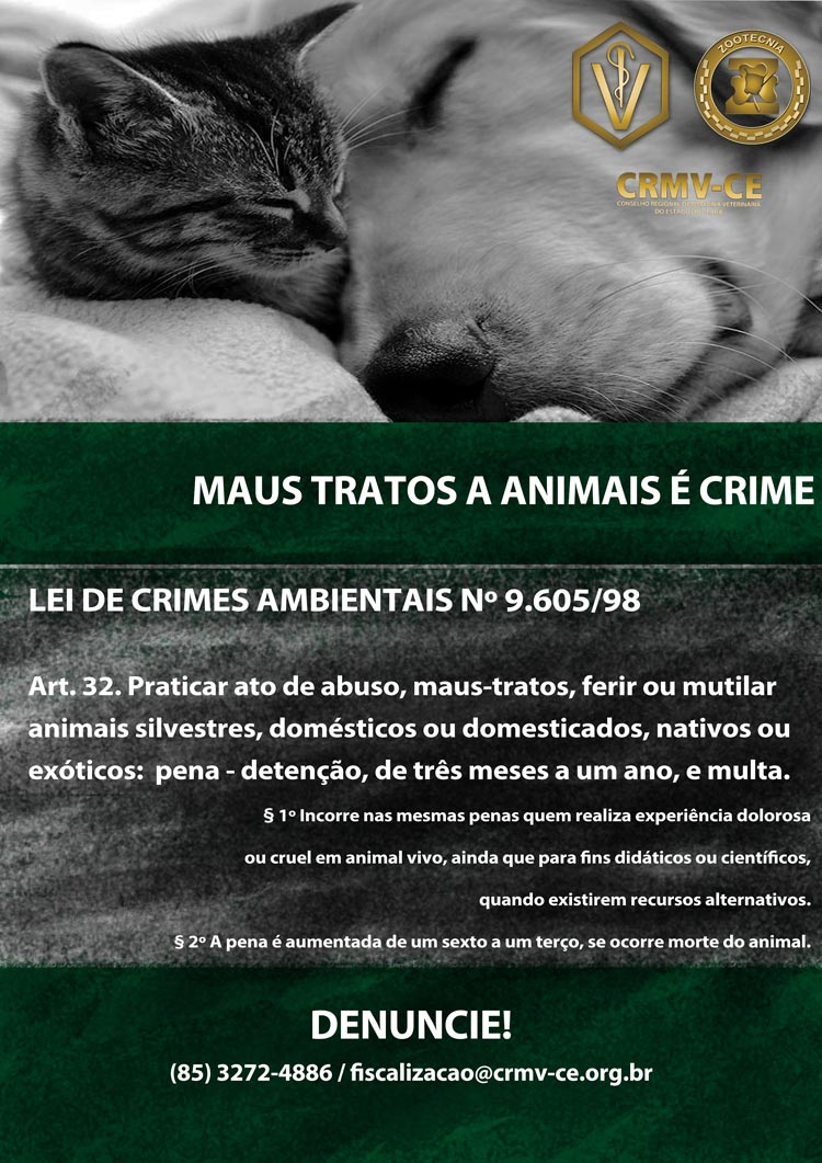 Maus tratos animal crmv ce